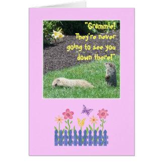 Grand-maman heureuse d'anniversaire de Groundhog ! Carte De Vœux