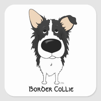 Grand nez border collie sticker carré