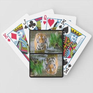 Grand tigre sauvage appréciant l'eau jeu de cartes