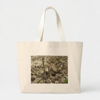 Grand Tote Bag Jeune asperge verte poussant de la terre