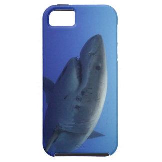 Grande caisse d'IPhone 5 de requin blanc Coque iPhone 5 Case-Mate