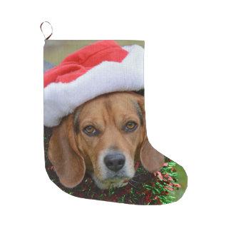 Grande Chaussette De Noël Beagle dans le casquette de Père Noël et la