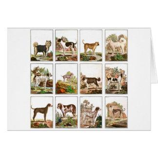 Grande collection de chiens (3x4) cartes de vœux