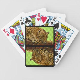 Grande détente sauvage de chat jeu de cartes
