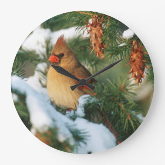 Grande Horloge Ronde Cardinal du nord dans l'arbre, l'Illinois