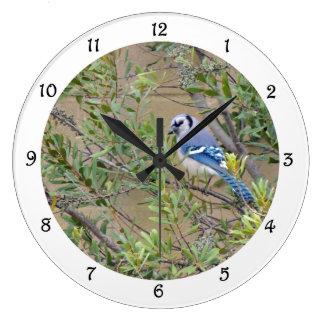 Grande Horloge Ronde Geai bleu dans l'horloge murale du sud du Myrte de