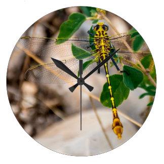 Grande Horloge Ronde Libellule dans le Texas Wilds