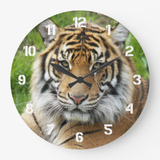 Grande Horloge Ronde Photo de tigre de grand chat