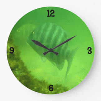 Grande Horloge Ronde Photographie sous-marine de poissons mignons de