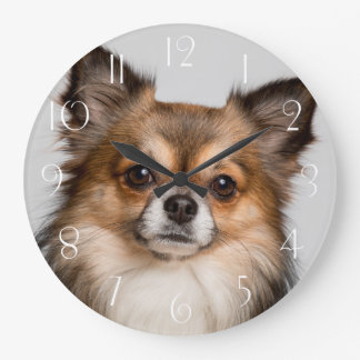 Grande Horloge Ronde portrait renversant de chiwawa