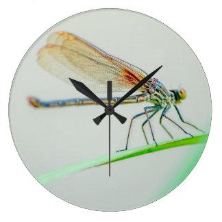 Grande Horloge Ronde Repos de libellule