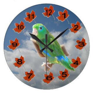 Grande Horloge Ronde Spetacled Parrotlet