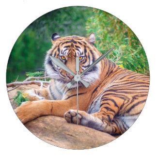 Grande Horloge Ronde Tigre étendu Relaxed
