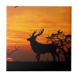 Grande silhouette de mâle au coucher du soleil petit carreau carré