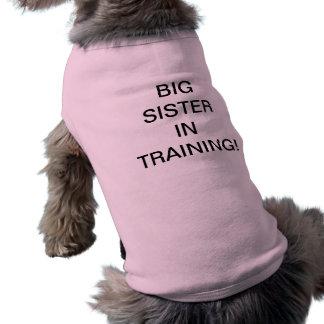 Grande soeur dans la formation t-shirt pour chien