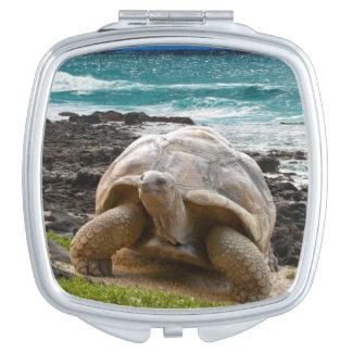 Grande tortue au bord de mer miroirs à maquillage