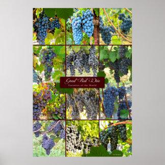 Grandes variétés de raisin de vin rouge du monde
