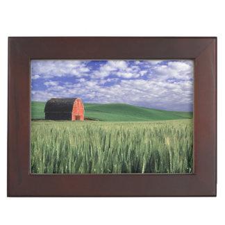Grange rouge dans le domaine de blé et d'orge en boîtes à souvenirs
