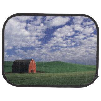 Grange rouge dans le domaine de blé et d'orge en tapis de sol