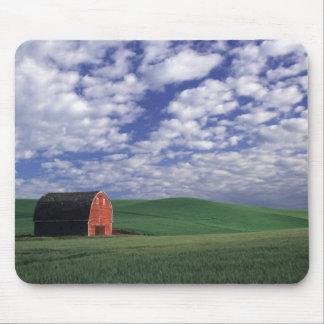 Grange rouge dans le domaine de blé et d'orge en W Tapis De Souris