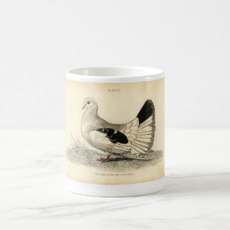 Gravure à l'eau-forte zoologique classique - mug