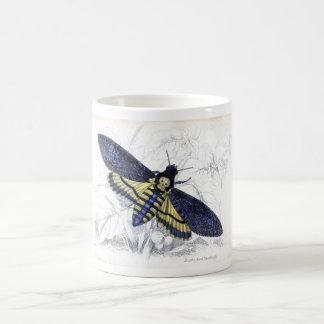 Gravure à l'eau-forte zoologique classique - mug blanc
