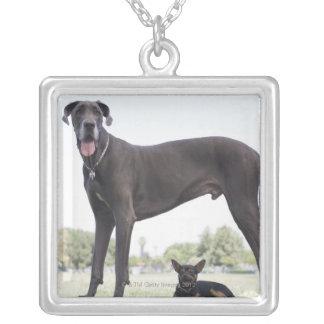 Great dane et petit chien de mélangé-race pendentif carré