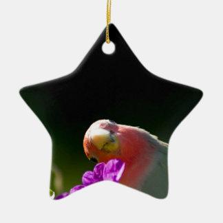 green bird ornement étoile en céramique