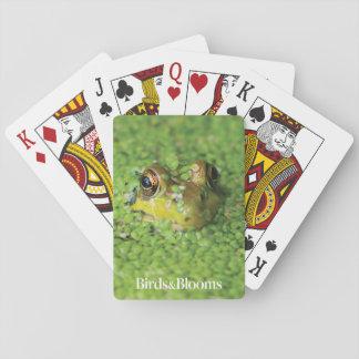 Grenouille dans les algues vertes jeu de cartes