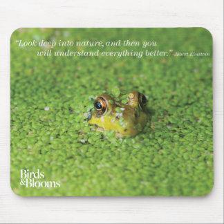 Grenouille dans les algues vertes tapis de souris