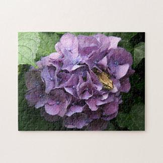 Grenouille dans un hortensia, puzzle de photo