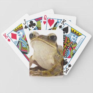 Grenouille d'arbre d'or jeux de cartes