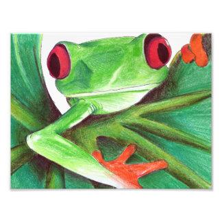 grenouille d'arbre mignonne photo sur toile