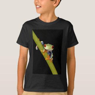 grenouille d'arbre observée par rouge t-shirt