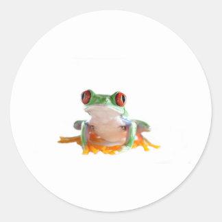 grenouille d'arbre sticker rond