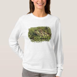 Grenouille de léopard de Rio Grande, berlandieri T-shirt