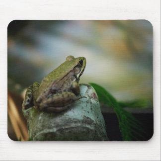 Grenouille en bronze sur le Froggy Tapis De Souris
