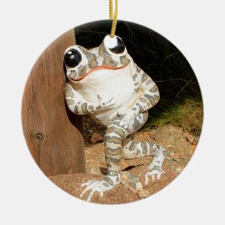 Grenouille heureuse avec de grands yeux ornement rond en céramique