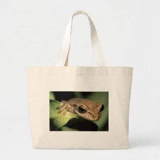 grenouille sac de toile