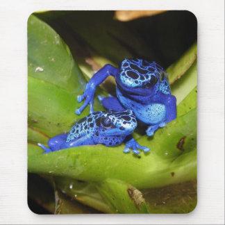 Grenouilles bleues de dard de poison dans la tapis de souris