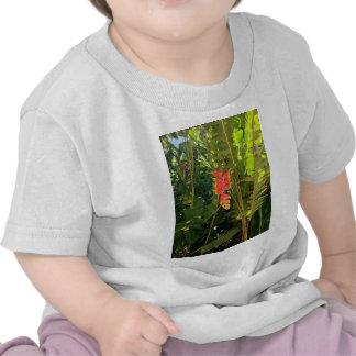 Griffe hawaïenne de homard de style de merveilles t-shirt
