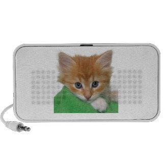 Griffonnage orange de chaton haut-parleurs
