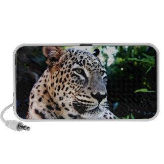 Griffonnage persan rare de léopard haut-parleurs notebook