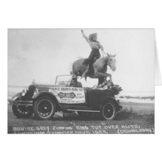 Gris mignon sautant son cheval carte de vœux