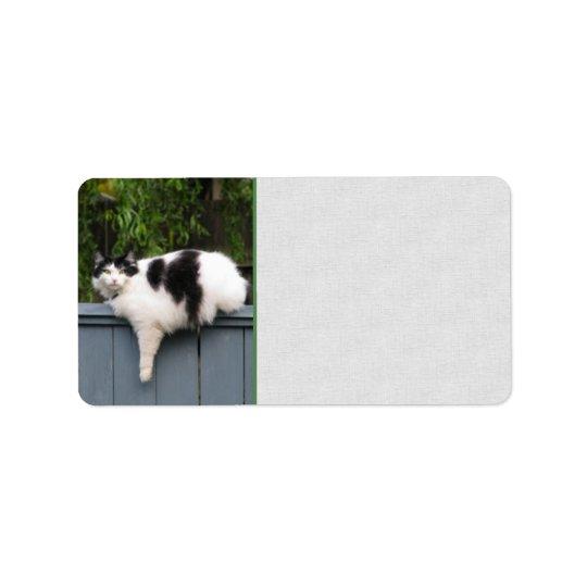 Gros chat sur la barrière étiquettes d'adresse