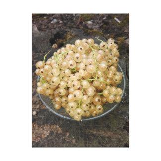 Groseilles blanches organiques du jardin toile