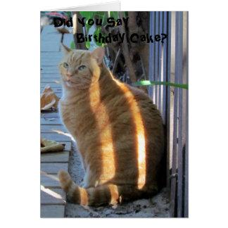 Grosse carte d'anniversaire de chat