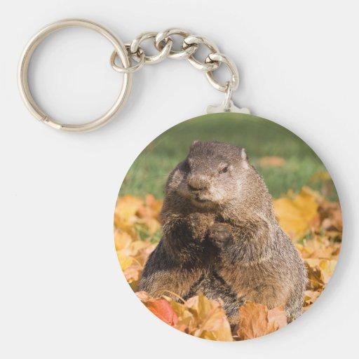 Groundhog Porte-clé