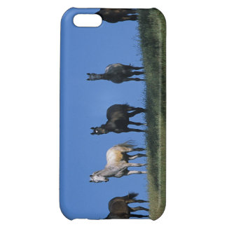 Groupe d'Arabes Coques iPhone 5C