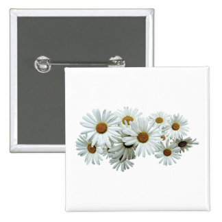 Groupe de marguerites blanches badges